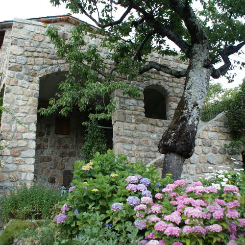 Bergerie de Chastagnas et jardin fleuri avec massifs d'hortensias